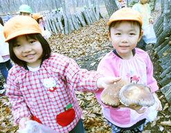はくちょう幼稚園(北海道苫小牧市)の様子