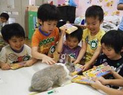 さかえ幼稚園(東京都羽村市)の様子