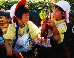 白幡幼稚園(神奈川県横浜市神奈川区)の様子