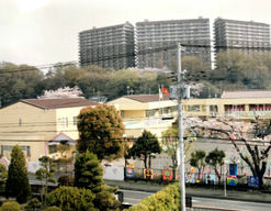 ぬるみず幼稚園(神奈川県厚木市)の様子