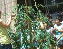 ハイランド白山幼稚園(愛知県日進市)の様子