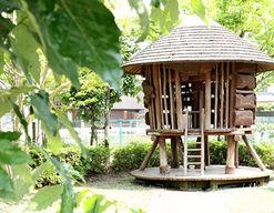 たかお幼稚園(福岡県太宰府市)の様子