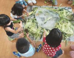 中の島みどりの保育園(北海道札幌市豊平区)の様子
