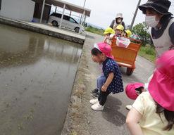 ニチイ弓庄保育所(富山県中新川郡上市町)の様子