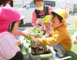 ニチイキッズこくふ保育園(徳島県徳島市)の様子