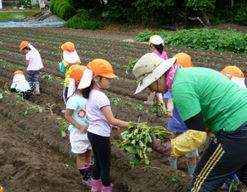 海の子保育園(茨城県ひたちなか市)の様子