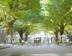 名古屋大学こすもす保育園(愛知県名古屋市千種区)の様子