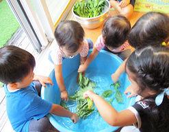 幼保連携型認定こども園みんなのとっぽこども園(神奈川県相模原市緑区)の様子