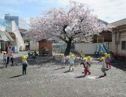 さくらの木保育園(神奈川県川崎市中原区)の様子