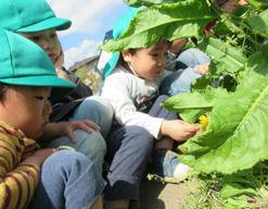 えびなの風保育園(神奈川県海老名市)の様子