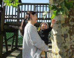 五日市保育園 (東京都あきる野市)の様子