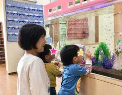 認定こども園ソレイユぐんげ保育園(大阪府高槻市)の様子