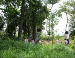 美園にじのこ保育園(埼玉県さいたま市緑区)の様子
