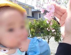 星の子保育園(埼玉県蓮田市)の様子