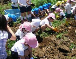 認定こども園 エンゼルスポーツ幼稚園(茨城県土浦市)の様子