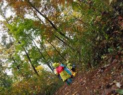 つるぎ保育園(石川県白山市)の様子