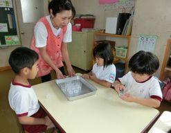 認定こども園リズム幼稚園(熊本県合志市)先輩からの一言