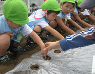 前沢幼稚園 (東京都東久留米市)の様子