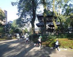 花ぞの保育園(福岡県福岡市博多区)の様子