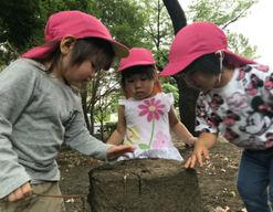 さくらうみ保育園本園(神奈川県藤沢市)の様子
