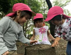 さくらうみ保育園鵠沼橘園(神奈川県藤沢市)の様子
