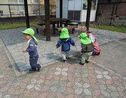 もりのなかま保育園札幌ひよこ園(北海道札幌市中央区)の様子