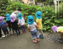 あそびのてんさい和光北口保育園(埼玉県和光市)の様子