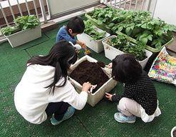 アイアイ保育園(神奈川県大和市)の様子