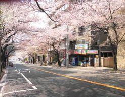 鷺沼なかよし保育園(神奈川県川崎市宮前区)の様子