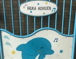 いるか保育園(兵庫県尼崎市)の様子