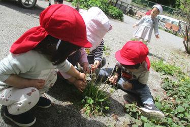 つみき幼稚園(北海道札幌市清田区)