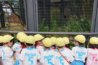認定こども園CinqPerles幼稚園(北海道札幌市北区)