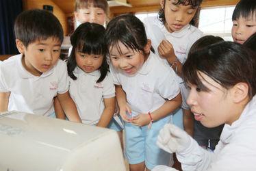 向丘幼稚園(広島県福山市)