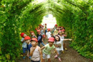 聖光緑が丘保育園(東京都武蔵村山市)