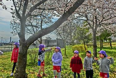 婦中もなみ保育園(富山県富山市)