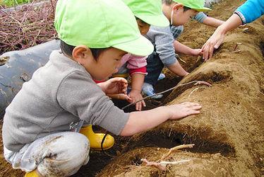 もみの木保育園(東京都町田市)
