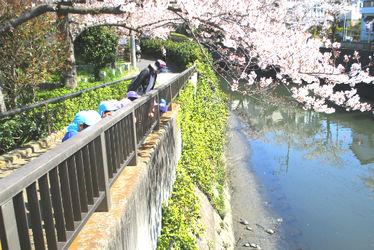 ぽっかぽっかにっけ保育園(兵庫県加古川市)