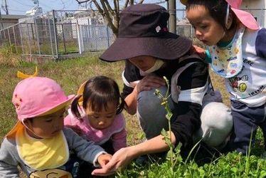 モコ宮脇保育園(静岡県掛川市)