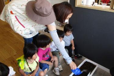 もりのなかま保育園保谷園(東京都西東京市)