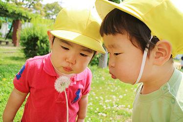 幼保連携型認定こども園 くすのきこども園(大阪府東大阪市)
