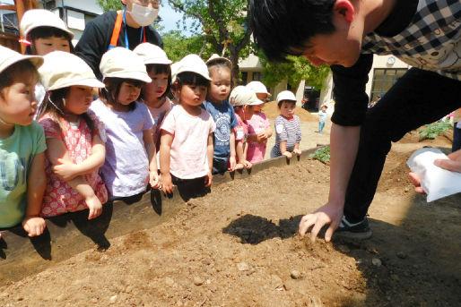学校法人柿の実学園