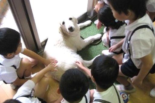 田端さくら幼稚園(東京都北区)