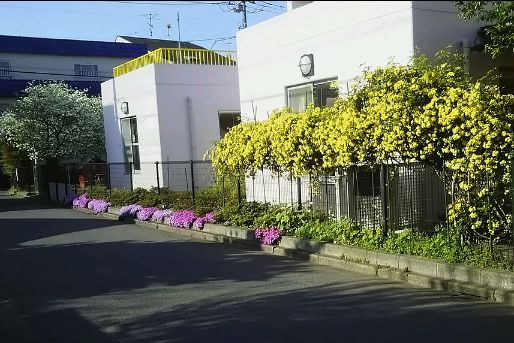 栗原保育園(埼玉県新座市)