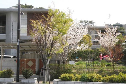 ニコニコ桜今津灯保育園(兵庫県西宮市)