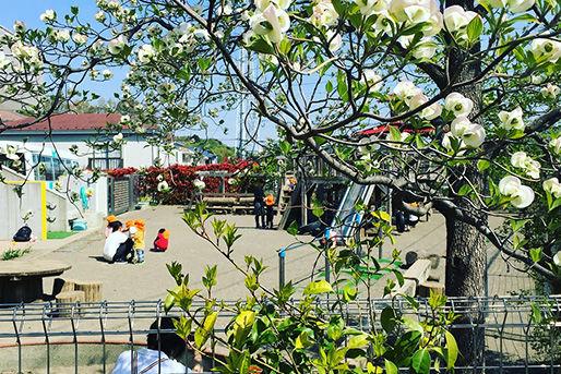 あかね台光の子保育園(神奈川県横浜市青葉区)