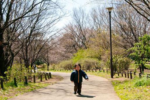 チェリーチャイルド保育園(東京都練馬区)