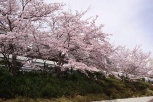 有馬高原病院院内保育園 みのり保育園(兵庫県神戸市北区)