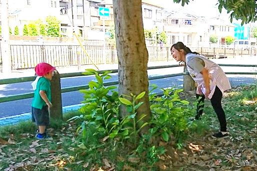 ふぇありぃ保育園レイクタウン園(埼玉県越谷市)