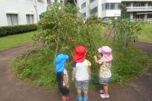 伊豆慶友病院院内保育(静岡県伊豆市)