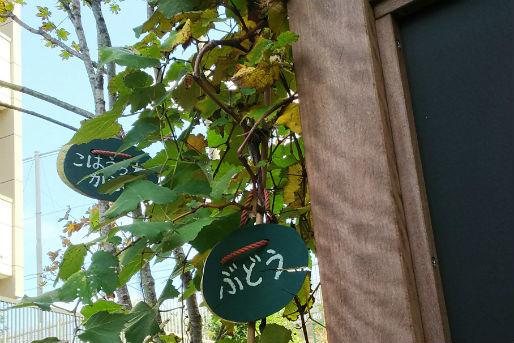 高輪さつき保育園(東京都港区)